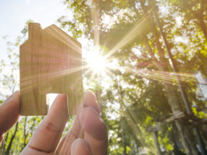 Hand holding wooden house with green forest background blurred and rays of sun light